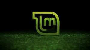 linux-mint1